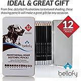 12-Pencil Artist Tin Box - Drawing Set - Sketching Pencils, Drawing Kit, Sketch Pencils - 6B, 5B, 4B, 3B, 2B, B, HB, F, H, 2H, 3H, 4H