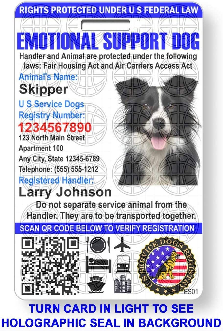 Amazon Com Just 4 Paws Custom Holographic Qr Code Emotional Support Id Card With Registration To U S Service Dogs Registry Plus Id Holder Free Digital Id Portrait Style Office Products