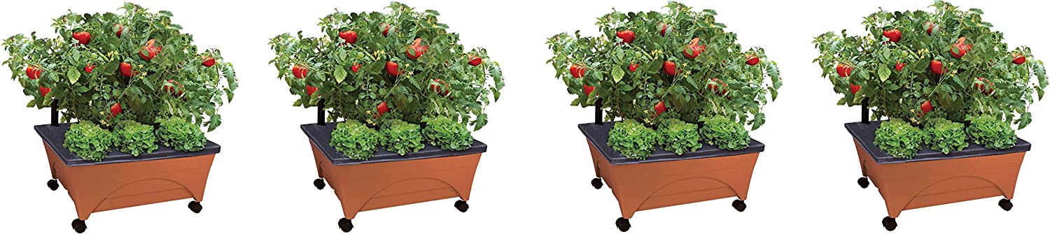 Emsco Group City Picker Raised Bed Grow Box – Self Watering and Improved Aeration – Mobile Unit with Casters (Pack of 4)