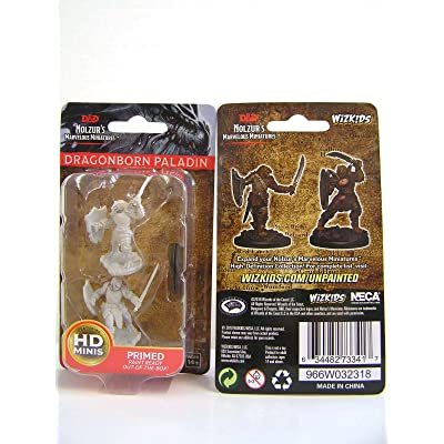 D&D Nolzurs Marvelous Unpainted Miniatures: Wave 5: Dragonborn Female Paladin: Toys & Games