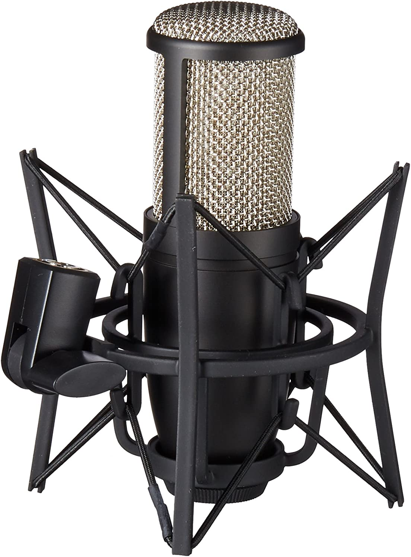 AKG Pro Audio Pro Audio Perception 220 Professional Studio Microphone