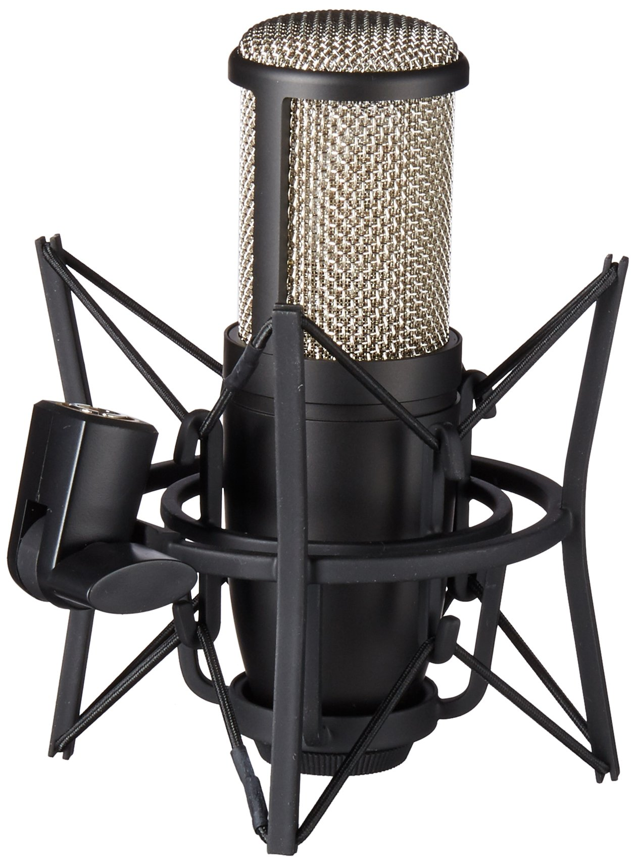 AKG Pro Audio Pro Audio Perception 220 Professional Studio Microphone