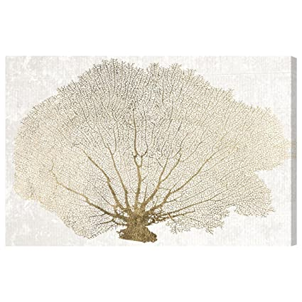 6a99af3c83b7 Amazon.com  The Oliver Gal Artist Co. 13282 Gold Coral Fan  Canvas ...