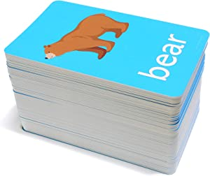 192 Picture Words Flash Cards - Includes Animals, Foods, People, Family, Verbs, Opposites and so Much More!