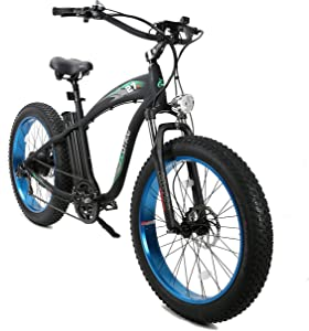 ECOTRIC 750W Fat Tire Electric Bicycle