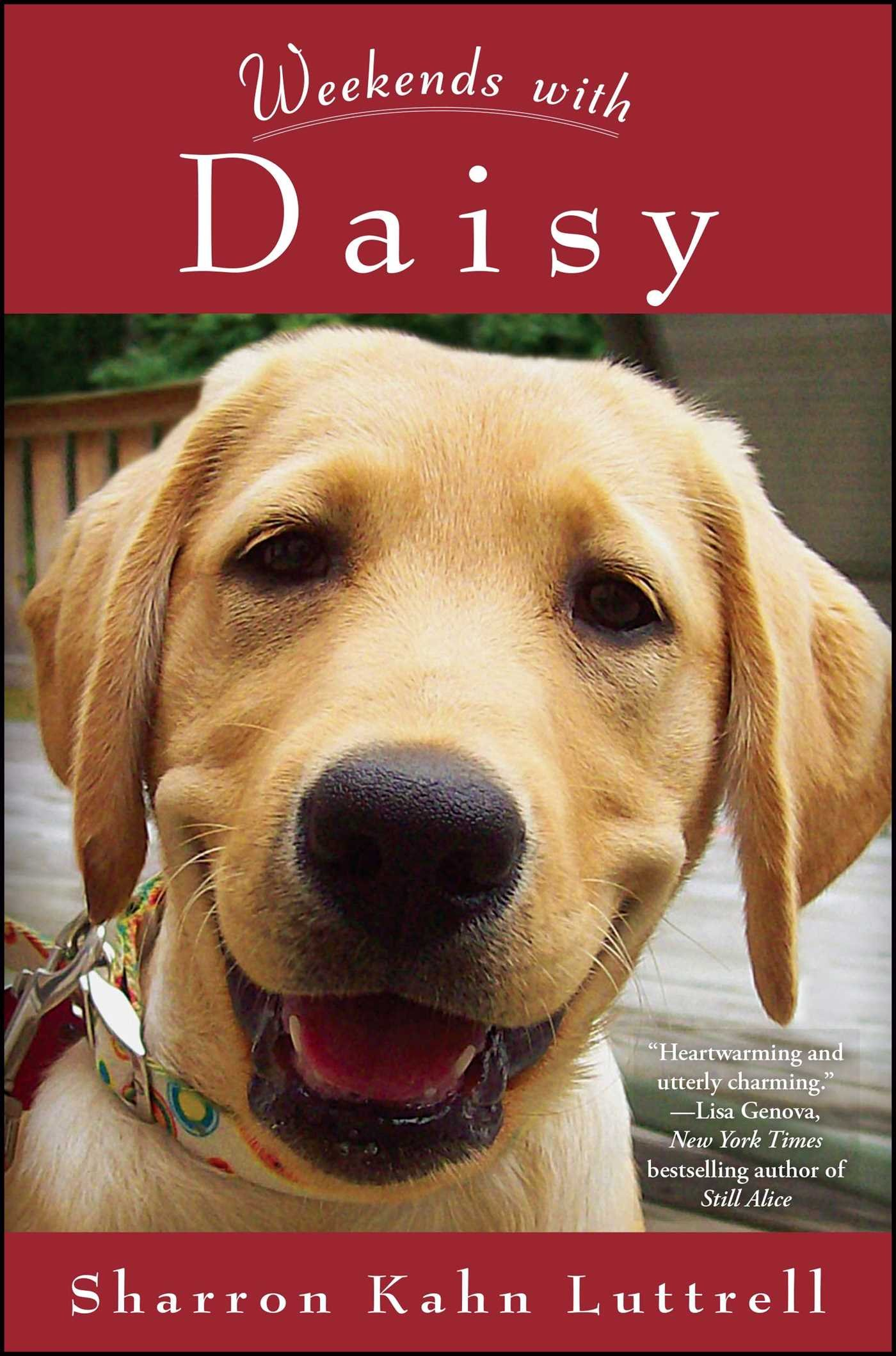 Weekends with Daisy: Sharron Kahn Luttrell: 9781451686258: Amazon.com: Books