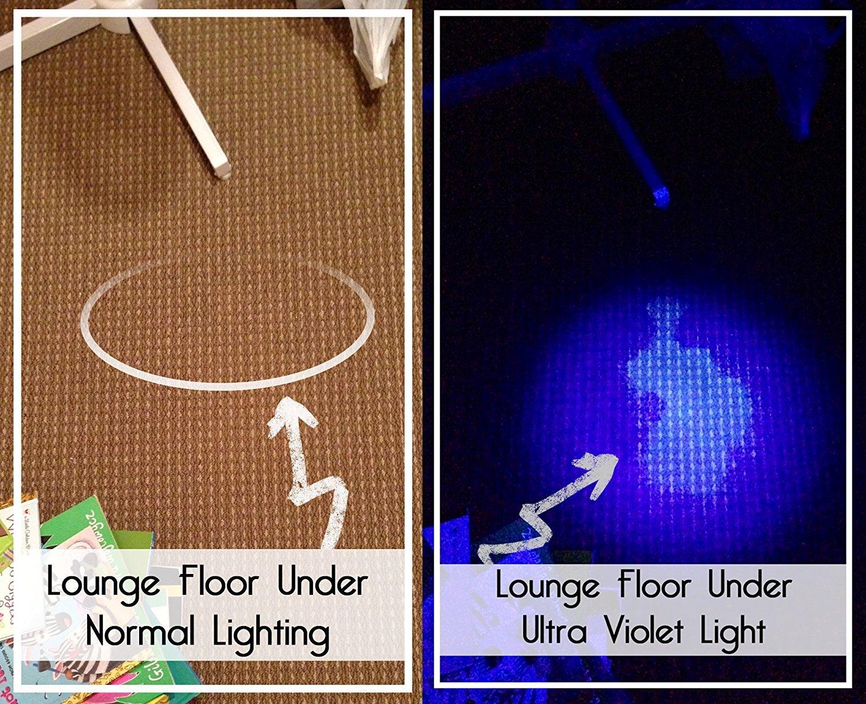 UV Sight Negro Luz de linterna, orina Detector de metales, ultravioleta, incluye 3 pilas AAA: Amazon.es: Productos para mascotas