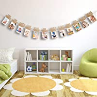 Skylofts 1st Birthday Decorations - Monthly Milestone Birthday Photo Banner for Newborn to 12 Months, Picture Banner for Birthday, Baby Shower Gift (Pictures not Included)