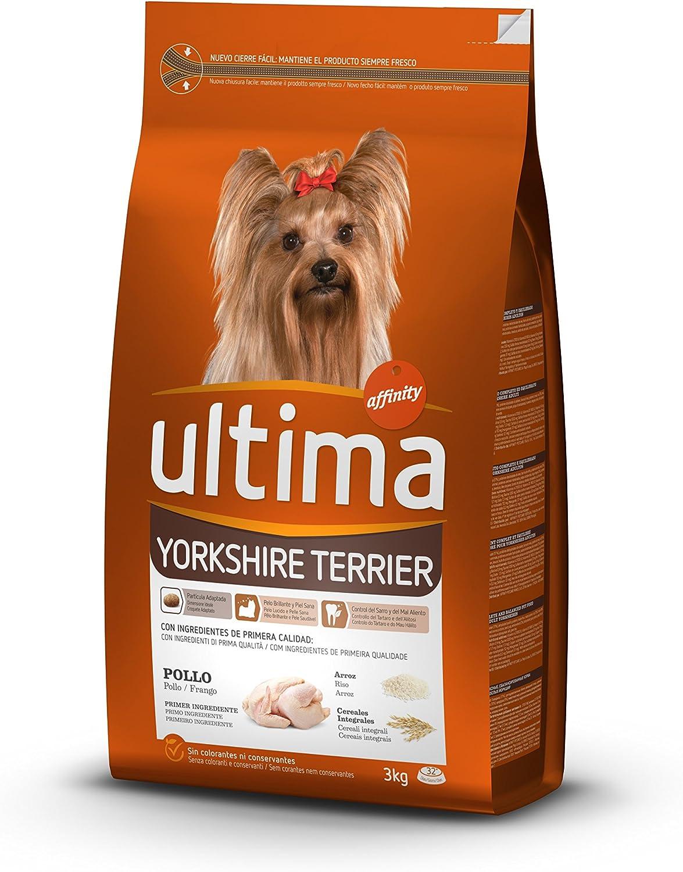 ultima Pienso para Perros Yorkshire Terrier con Pollo