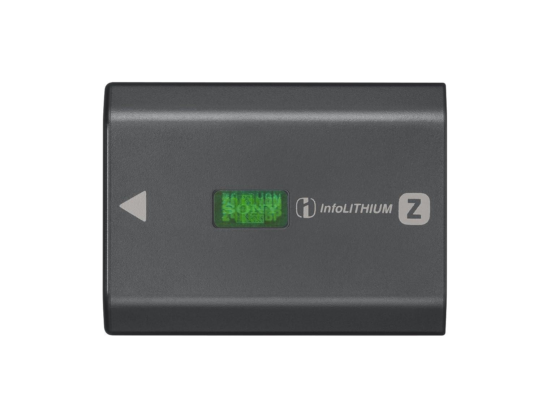 Sony NPFZ100 Rechargeable Battery Pack DSC Accessories, Black