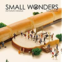 Tatsuya Tanaka : small wonders life portrait in miniature