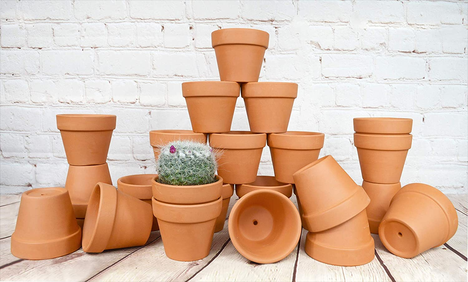 My Urban Crafts 24 Pcs Small Terra Cotta Pots 2.5 x 3 inch Mini Flower Clay Pots with Drainage Hole Ceramic Pottery Nursery Terracotta Planter for Succulent Cactus Plants, Wedding Bridal Party Favors