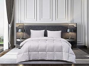 Blue Ridge Home Fashions Naples 700 Thread Count Cotton Hungarian White Goose Down Comforter, Twin