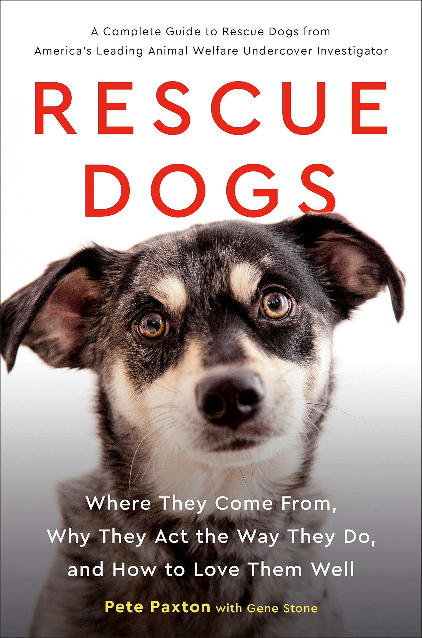 Rescue Dogs: Where They Come From, Why They Act the Way They Do, and How to Love Them Well by TarcherPerigee