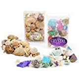 Fossil and Crystal Box Collection - Set of 2 boxes