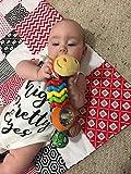 Unique rattle sound that Baby loves.