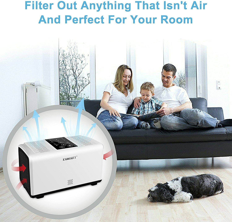 sumgott purificador de aire Air Purifier con filtro HEPA Elimina ...