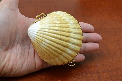 Yellow Cup Sea Shell Trinket Box Coin Purse