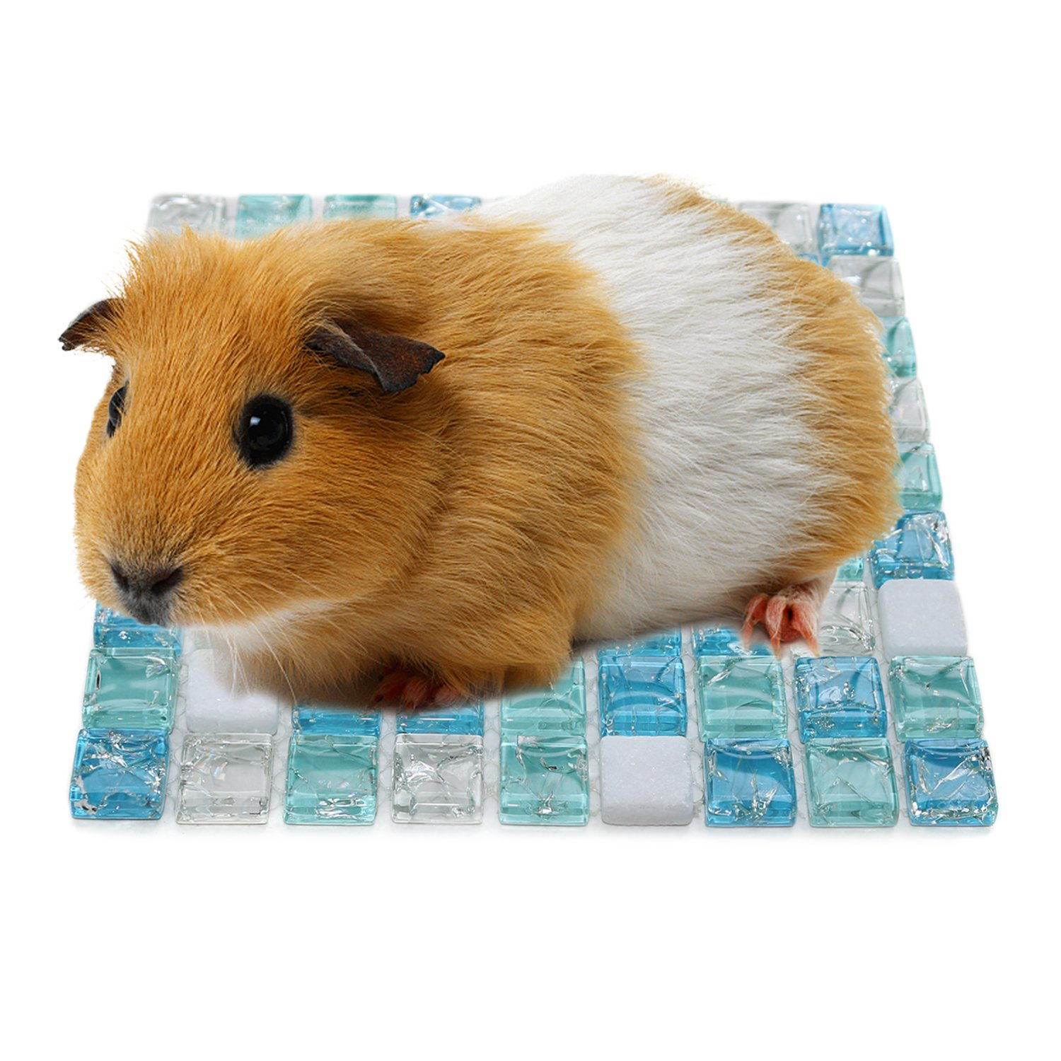 RYPET Hamster Cooling Mat - Crystal Marble Pet Cooling Pad for Hedgehogs, Guinea Pig, Hamster, Rats and Similar Small Animals S