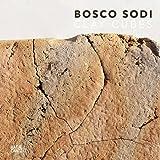 Bosco Sodi: Clay Cubes