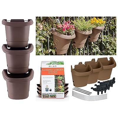Bloem Hanging Garden Planter Kit (3 Pack) Chocolate : Garden & Outdoor