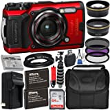 Olympus Tough TG-6 Digital Camera with Deluxe Accessory Bundle – Includes: SanDisk Ultra 64GB SDXC Memory Card + 2X…