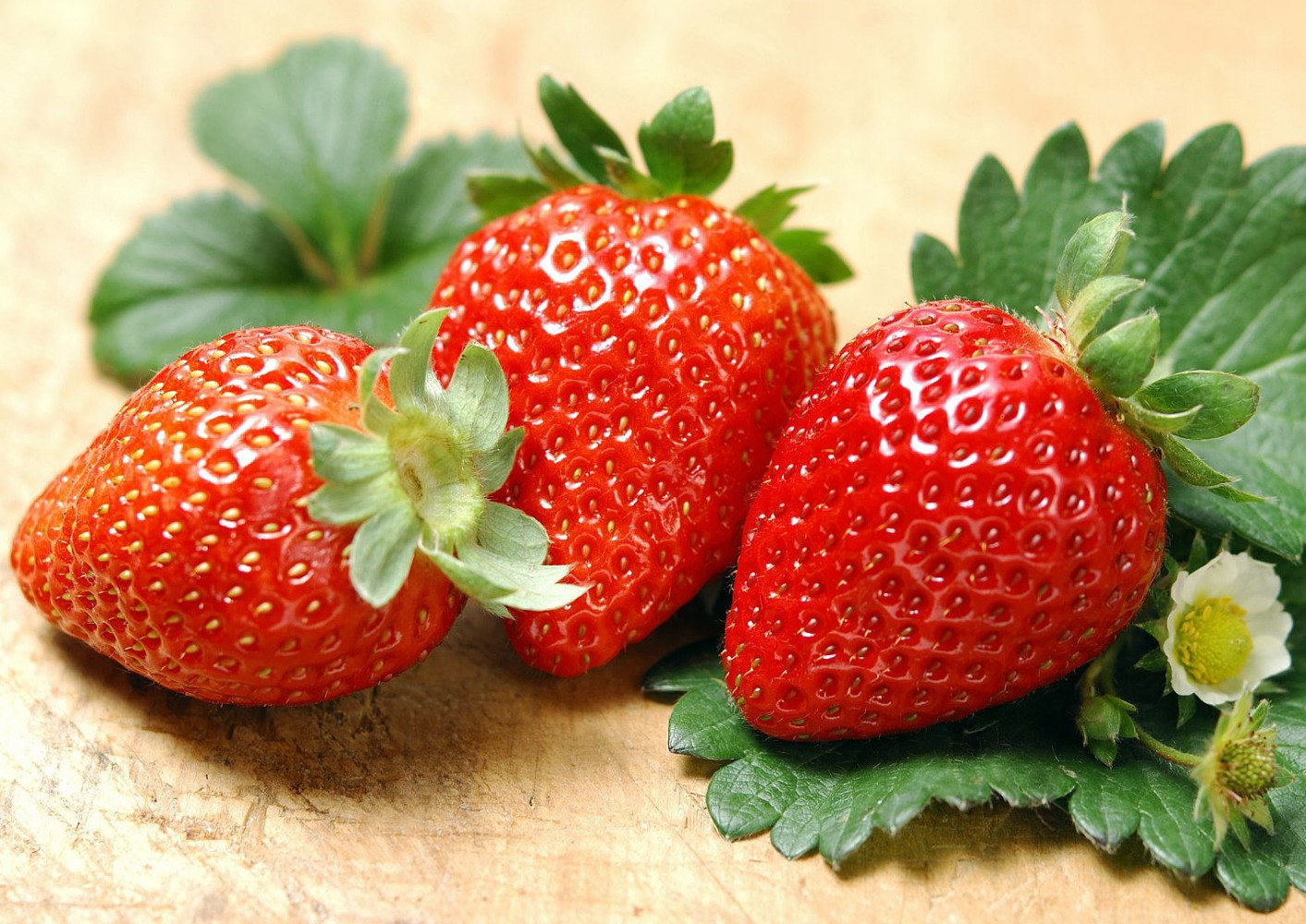 Strawberry Alba: variety description, cultivation and care 46