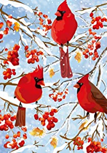 Texupday Winter Cardinal Trio Garden Flag Snowy Scene Outdoor Yard Flag 12