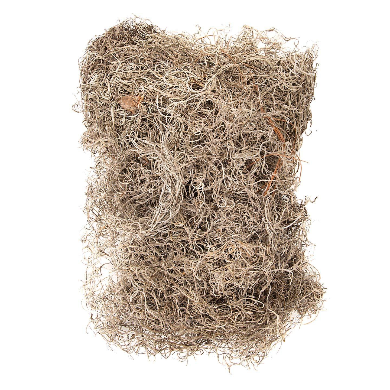 Bulk Buy: Darice DIY Crafts Spanish Moss Dry Bulk 4 lbs (3-Pack RHB