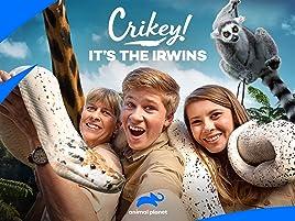 Watch Crikey It S The Irwins Season 1 Prime Video