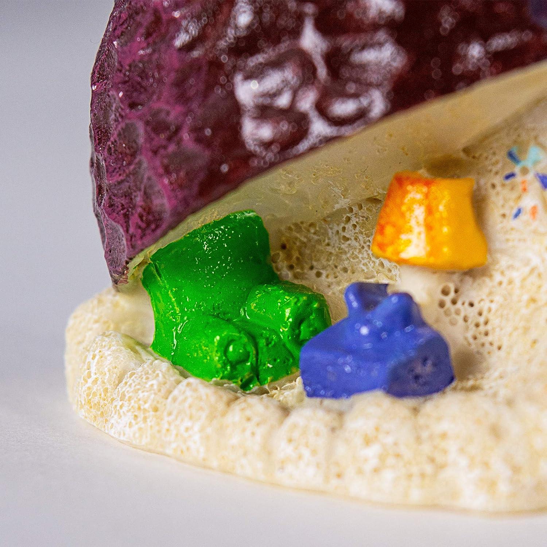 Amazon Com Spongebob Squarepants Aquarium Ornament 2 1 2 By 2 3 4 By 1 Inch Pet Supplies