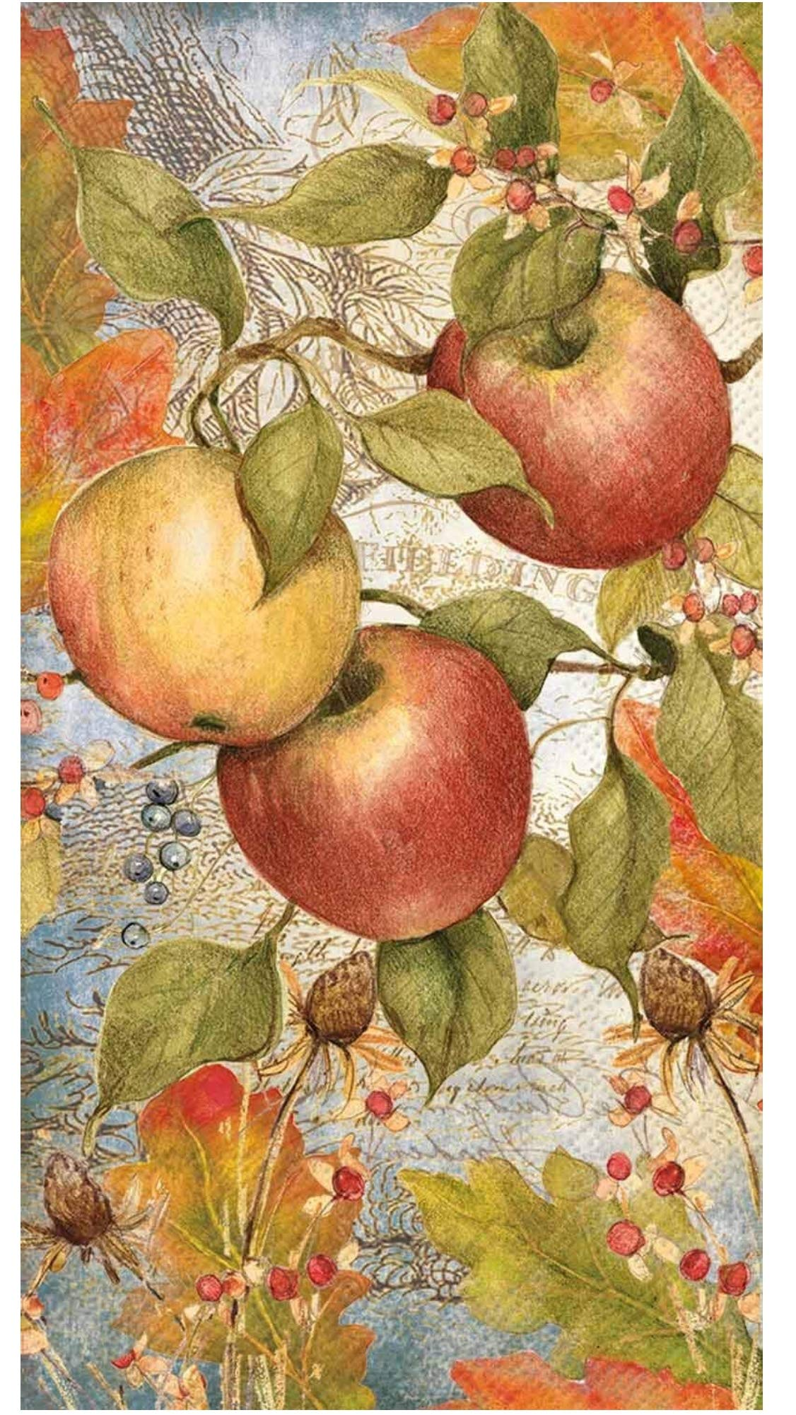 Mesafina Apple Guest Towels Buffet Paper Napkins, 32 ct by Mesafina