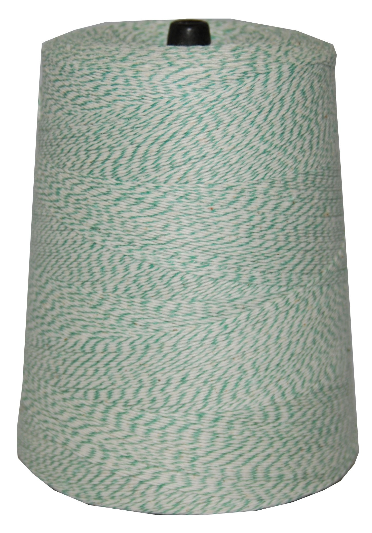 T.W Evans Cordage 07-042 4 Poly Variegated 2-Pound Cone, 9600-Feet, Green and White