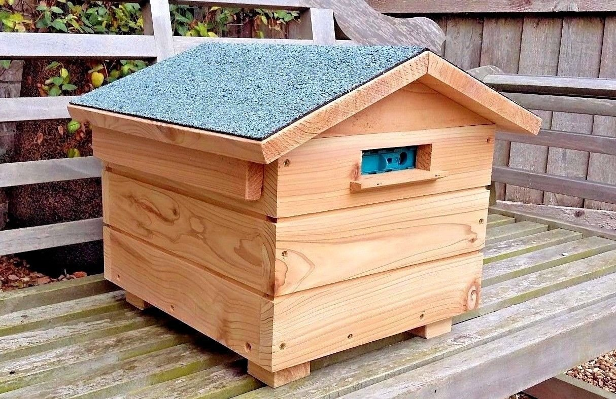 Dragonfli Wooden Bummblebee Hive with Live Colony of British Bumblebees