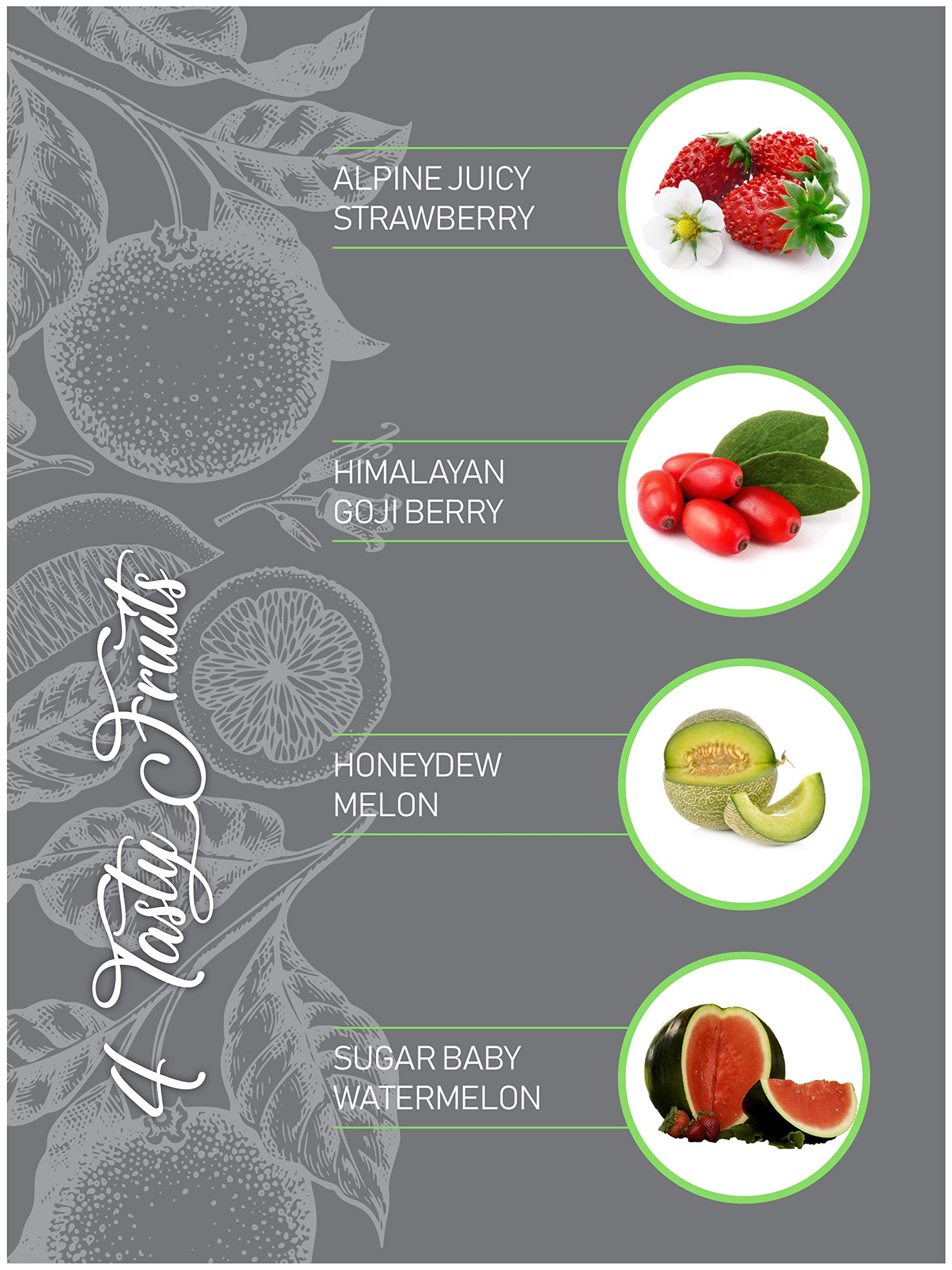 Planters' Choice Exotic Fruits Growing Kit - Everything Included to Easily Grow 4 Unique Fruits - Strawberries, Goji Berries, Honeydew, Watermelon + Moisture Meter by Planters' Choice (Image #2)