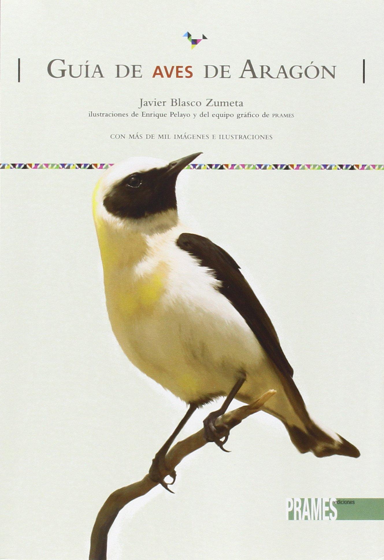 Guía De Aves De Aragón: Amazon.es: Javier Blasco Zumeta, Javier Blasco Zumeta: Libros