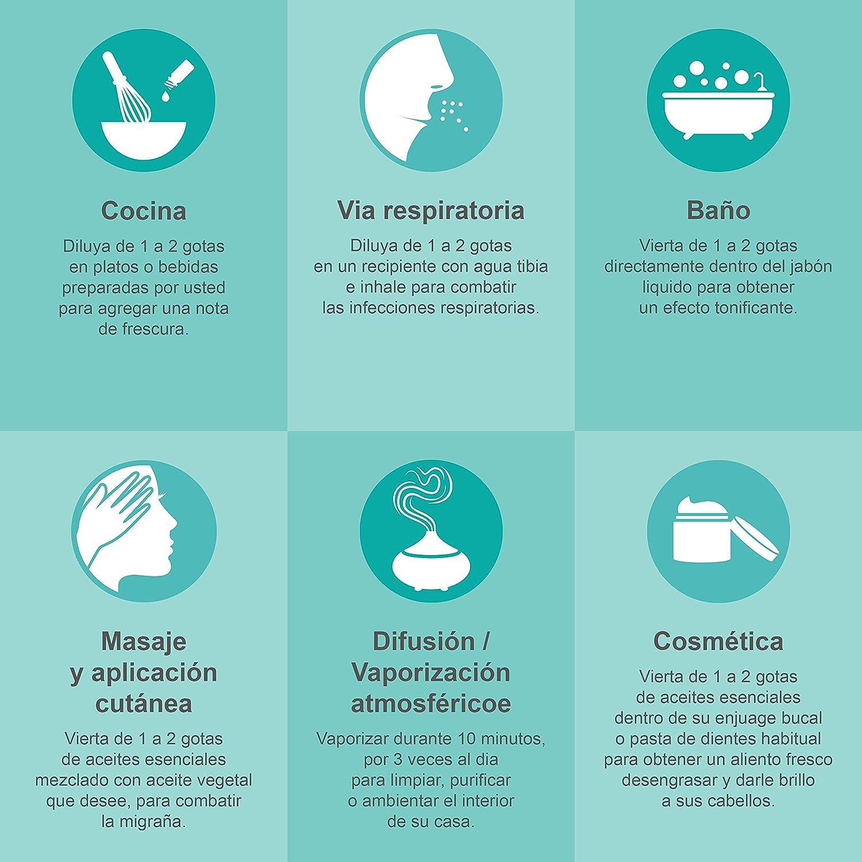 Aceite Esencial Perfumado Menta Piperita Premium Bio 30ml Aceite Esencial Quimitipado Certificado HEBBD Terapéutico 100% Puro Ideal Humidificador ...