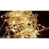 Jaipurcrafts Webelkart Decorative Yellow Color Rice LED Lights, 15 Metre Long (Pack Of 1)