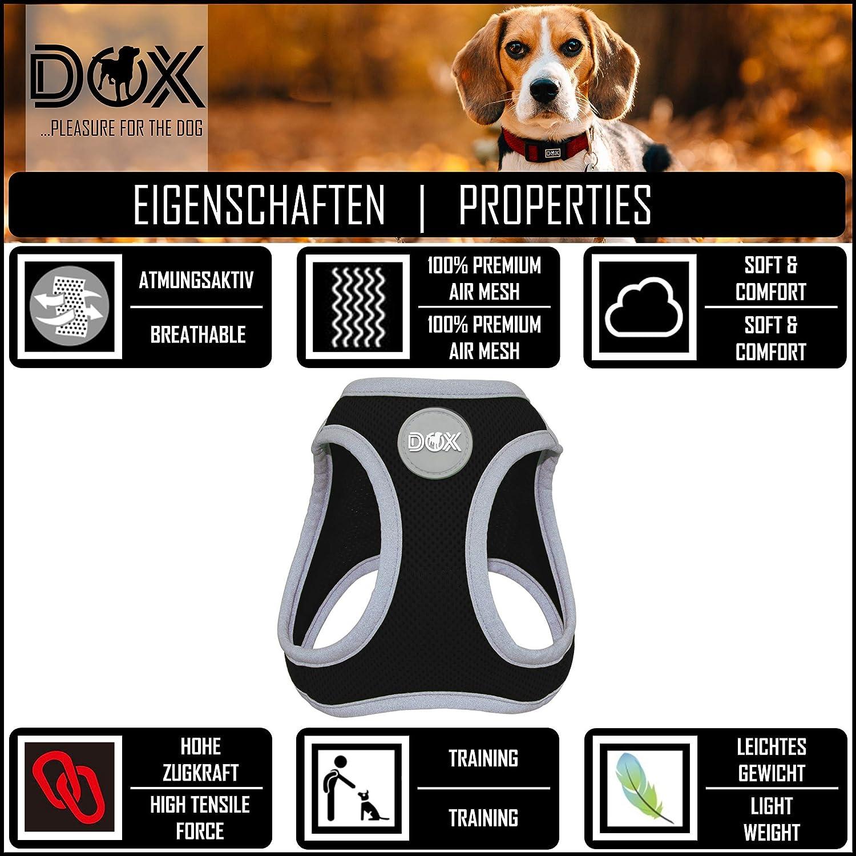 IEUUMLER Brustgeschirr Hundegeschirr Air Mesh f/ür Gro/ße Mittelgro/ße Mittlere /& Kleine Hunde IE083