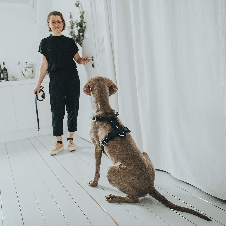 mit geschmeidigem und robustem Rindsleder HUNTER Aalborg Hundegeschirr Y-Form