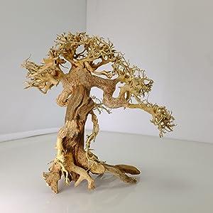 Bonsai Driftwood Aquarium Tree