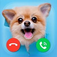Fake Calls DOGS prank