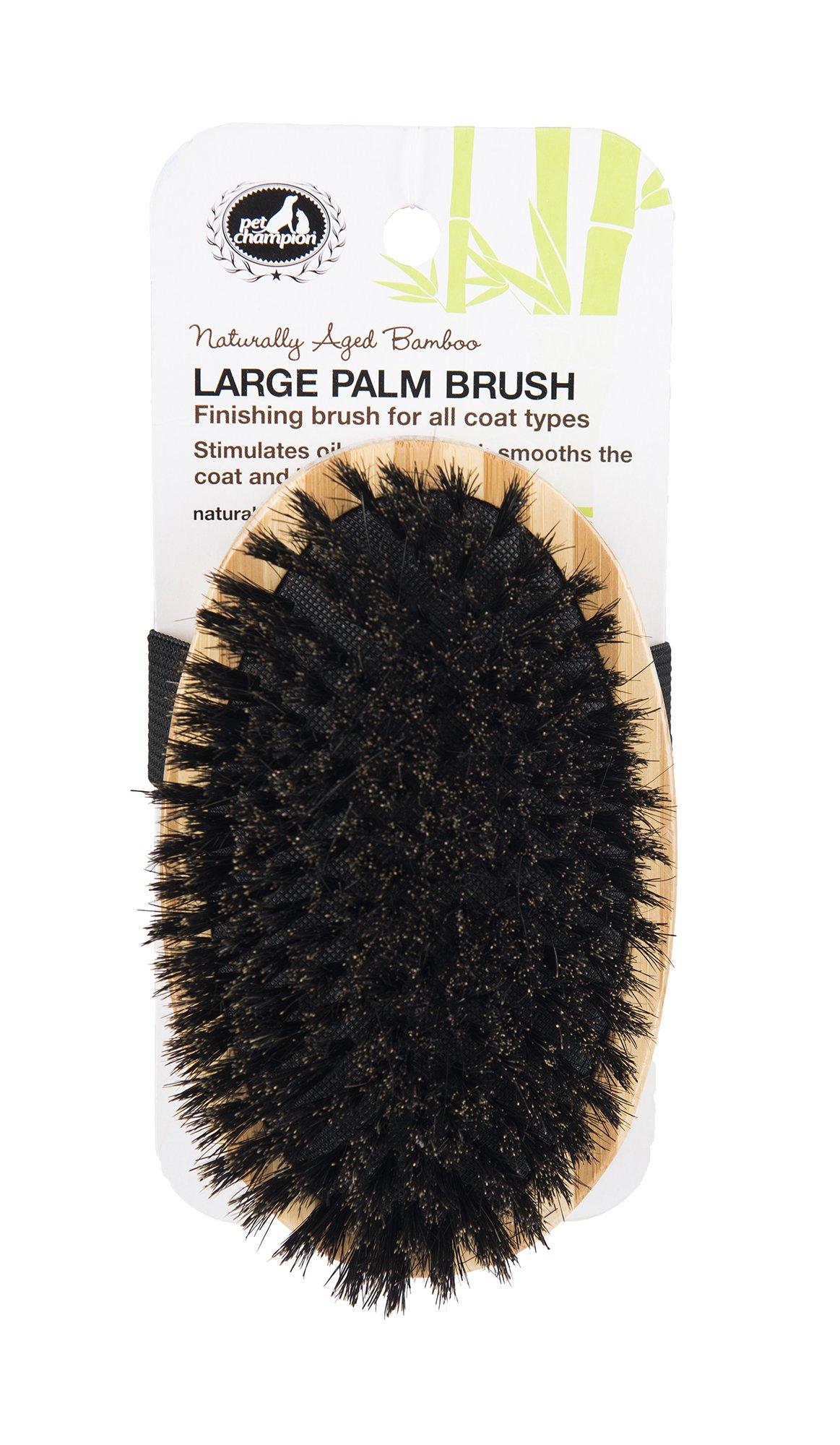 Pet Champion PTBBPLMBR All Natural Bristle Bamboo Palm Pet Brush, Large, Brown