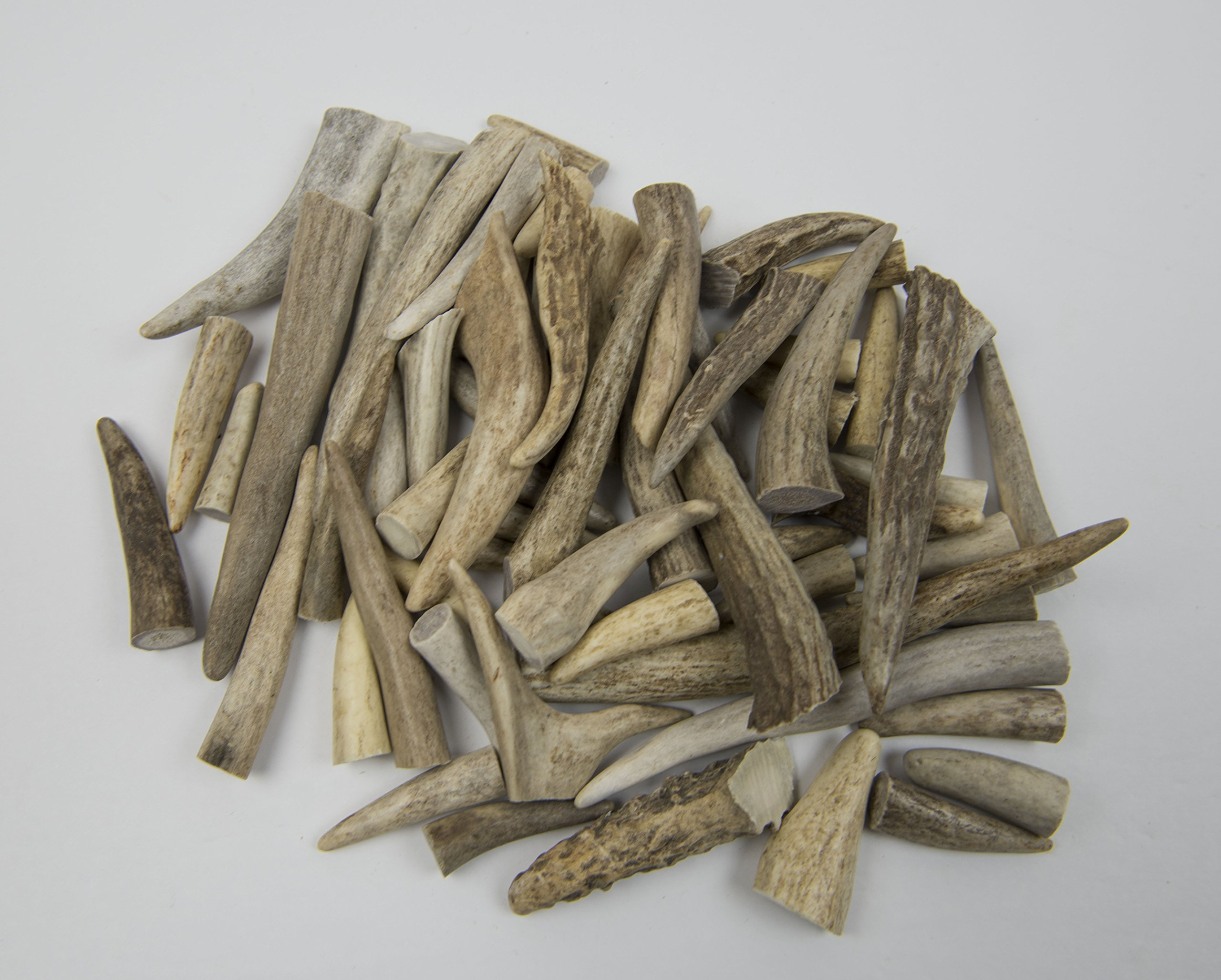 Premium ANTLER MAN Whitetail Deer Antler TIPS/POINTS/TINES - Sold by the pound