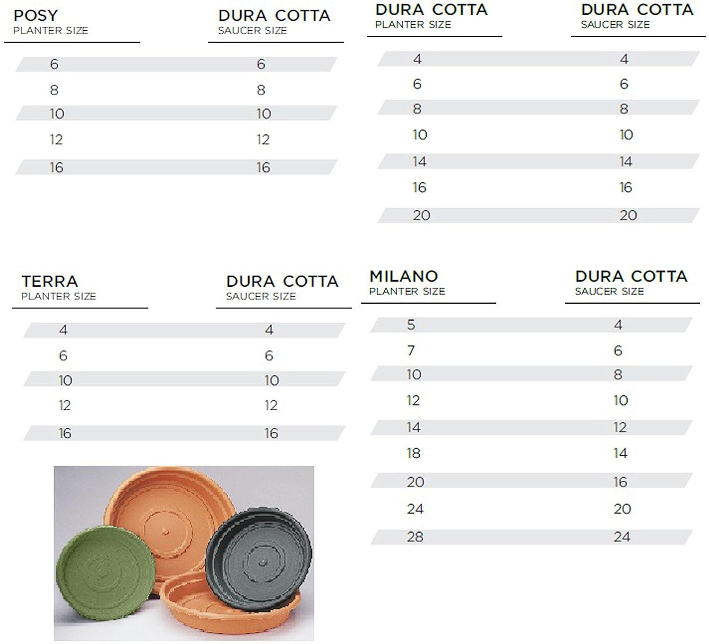 Chocolate Bloem Living Dura Cotta Saucer 24