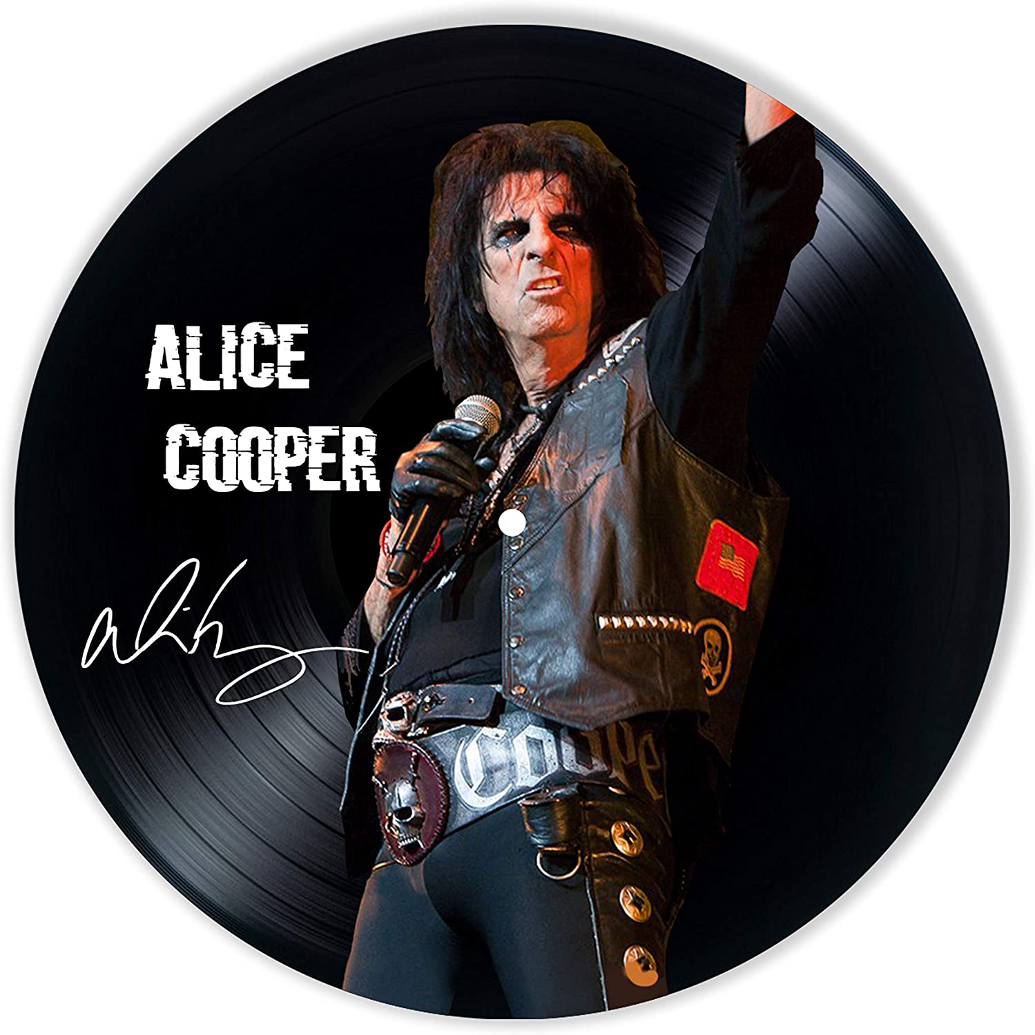 Alice Cooper Vinyl Decor, Wall Decor Painted Alice Cooper, Original Gifts for Music Lovers,The Best Gift for Souvenir, Unique Wall Art Home Decor