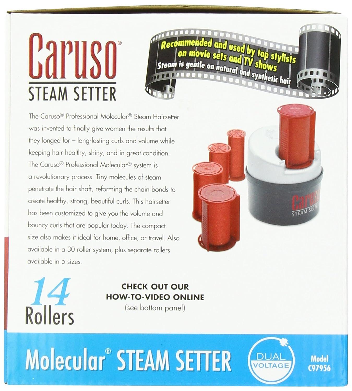 Amazon Caruso Traveler 14 Molecular Steam Hairsetter Hair