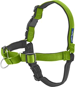 PetSafe Easy Walk Deluxe Dog Harness, No Pull Dog Harness – Perfect for Leash & Harness Training – Stops Pets from Pulling and Choking on Walks – Works with Small, Medium and Large Dogs