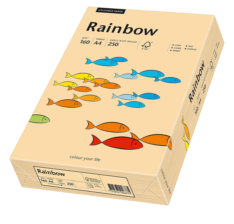 Papyrus 88042505 - Risma di carta Rainbow multiuso, 160 g/m², formato A4, 250 fogli, colore: Salmone