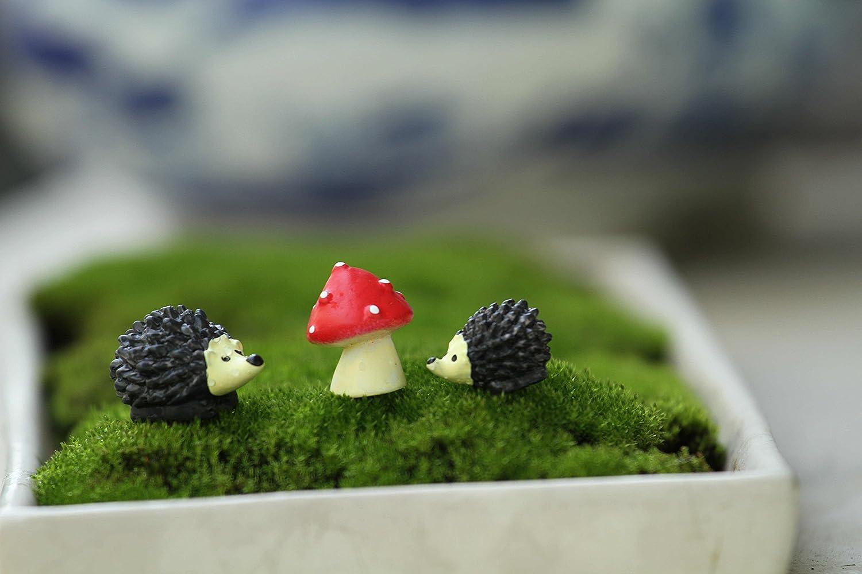 Amazon.com : Ginsco Miniature Ornament Hedgehog & Mushroom Set for ...